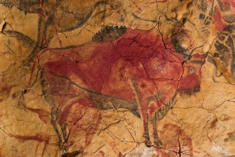 Altamira - bison